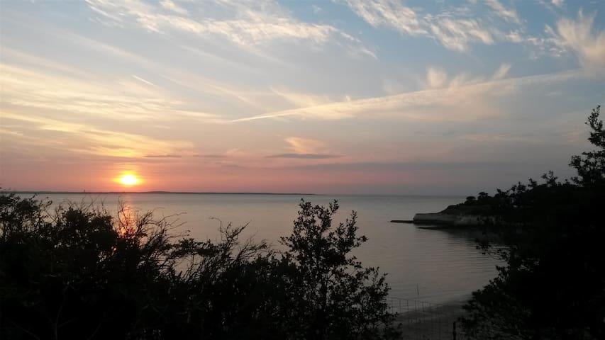 Jardanémone - Meschers-sur-Gironde - Vakantiewoning