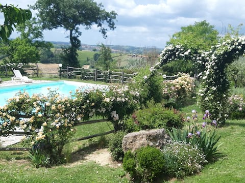 Lovely Villa near Rome with large pool