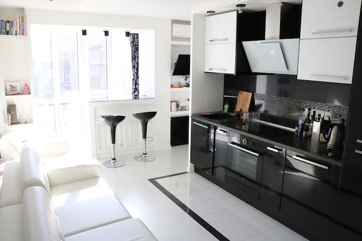 Modern and Clean apartment in central Moscow