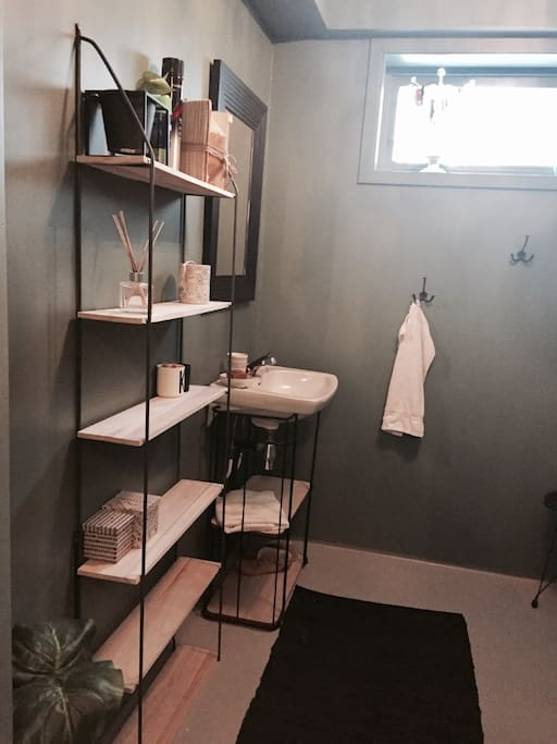 Guest bathroom (with toilet and shower)
