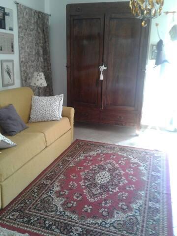 La camera /studio con divano-letto matrimoniale