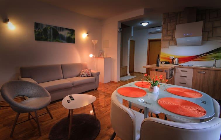 Deluxe Apartment Olga