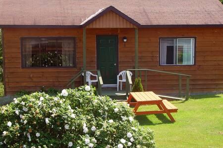 Cabin on beautiful Broad Lake in Bellevue Beach