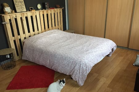 Grande chambre dans maison cosy avec jardinet