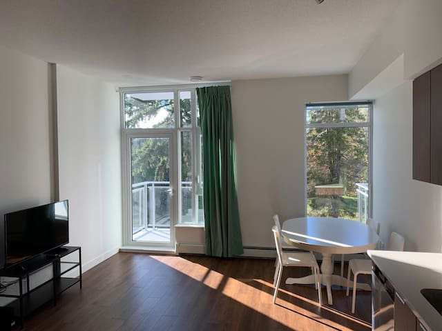 Surrey central - brand new studio apartment
