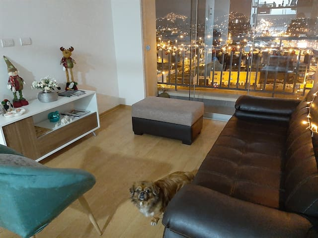 Comfy place with friendly dog! New apartment!