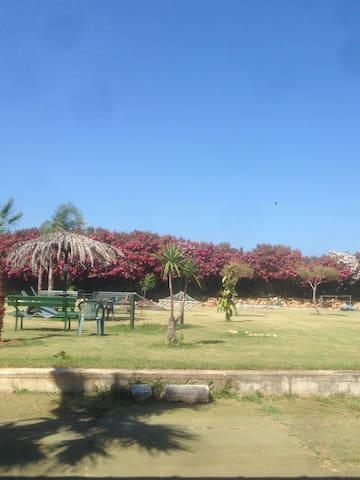 CASALABATE(LE) Due appartamenti immersi nel verde - Casalabate - Flat