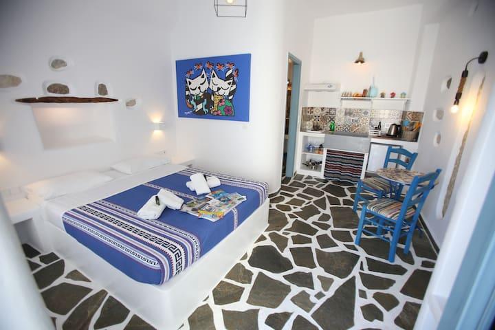 Nereus - Naxos  Studio with courtyard