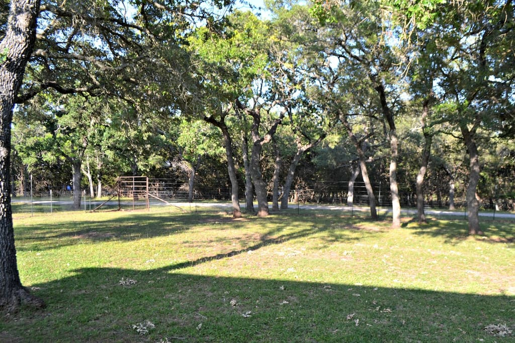 Parklike grounds sure to have deer passing by morning and evening.  Numerous vignettes to sit or hang a hammock.