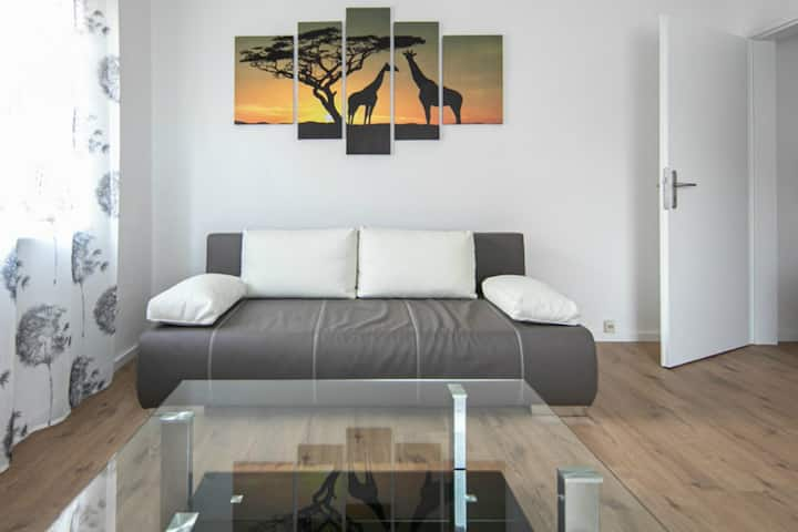 2-Room Apartment in the centre of Nurnberg,Netflix