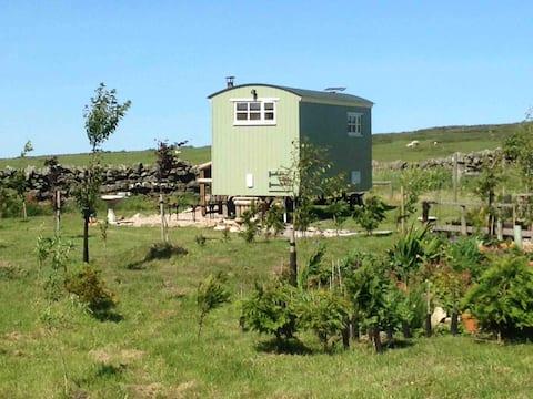 Rosie Shepherds hut Bellingham Northumberland
