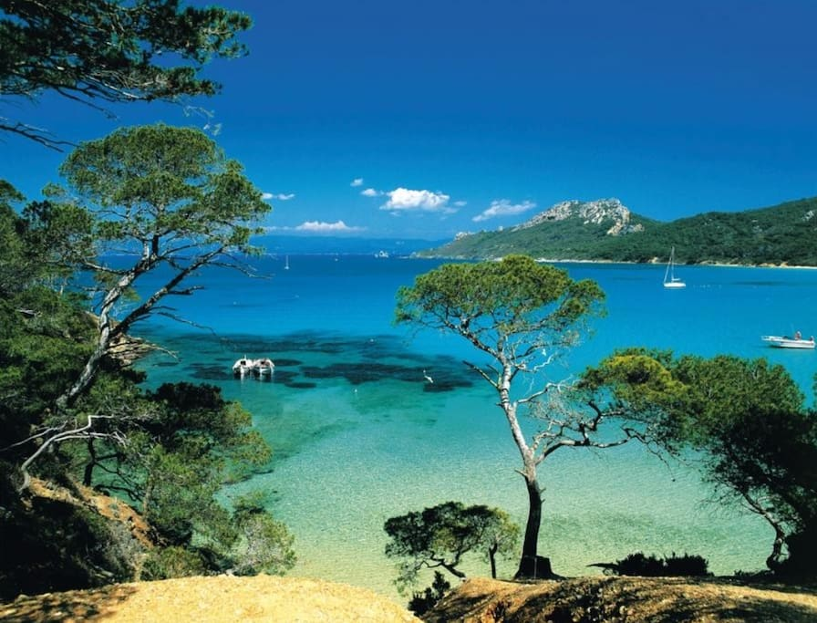 Lerins island go there by boat from Cannes or golf juan it is fantastic and closed