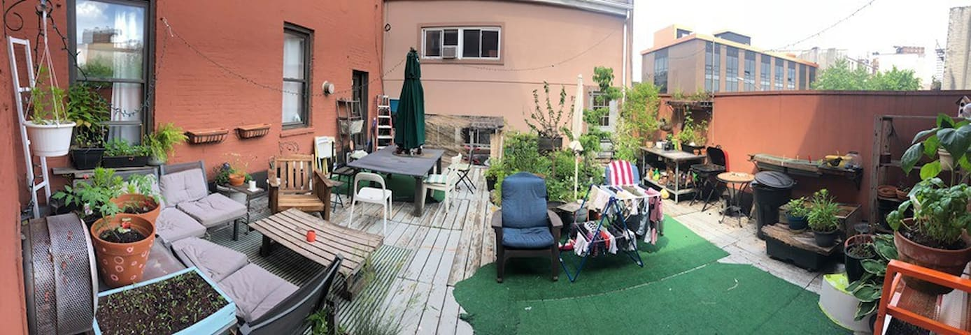 The backyard, which we share with two other apartments.