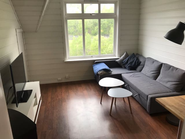 Nice apartment near Trolltunga.