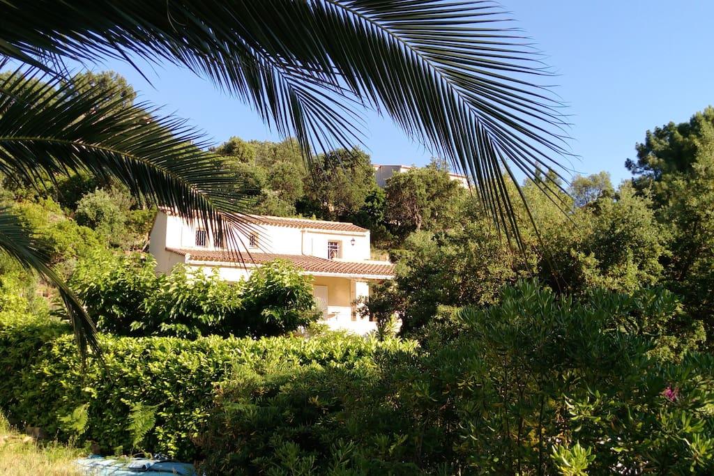 Rayol rez jardin calme villa proven ale matraka flats for Jardin rayol canadel