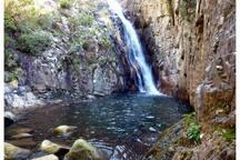 Natural Park of Montseny