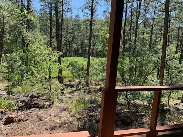 Private Cabin on Billy Creek with 2 acres!