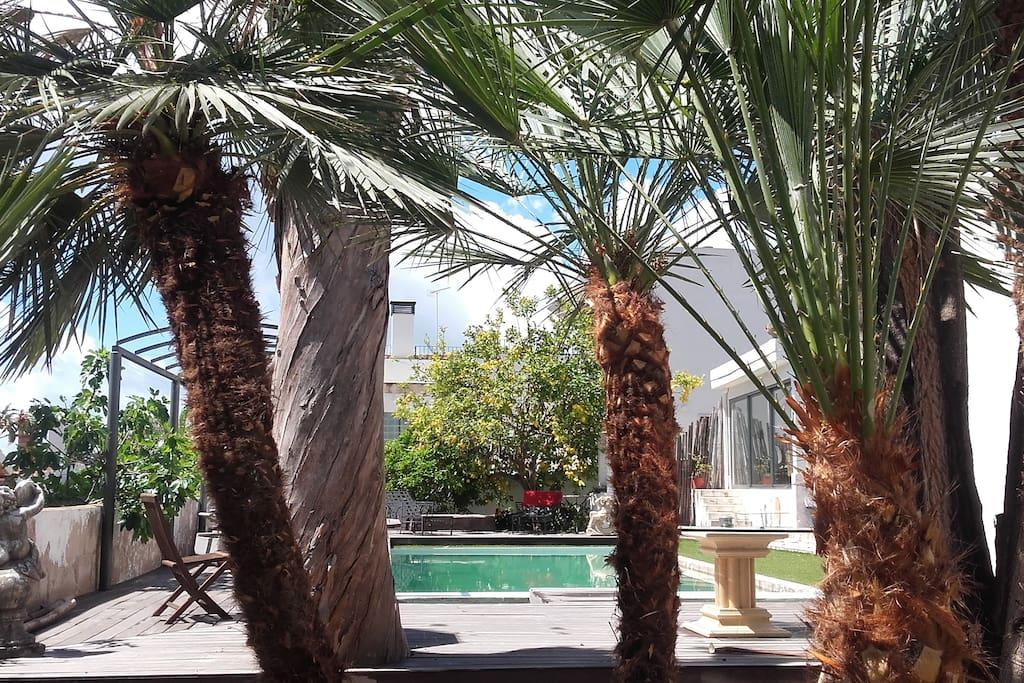 Guest house palma de mallorca seaviews maisons louer for Maison palma de majorque