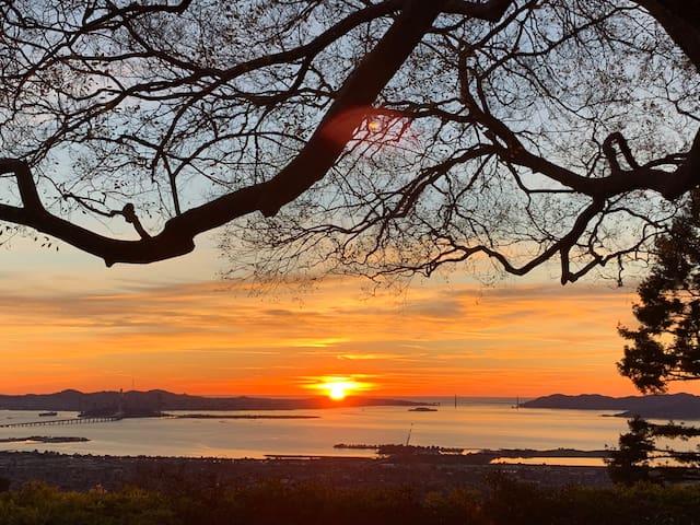 BRIGHT SPACIOUS Berkeley Hill home PANORAMIC views