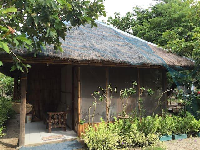 Garden Bahay Kubo - Carles - House