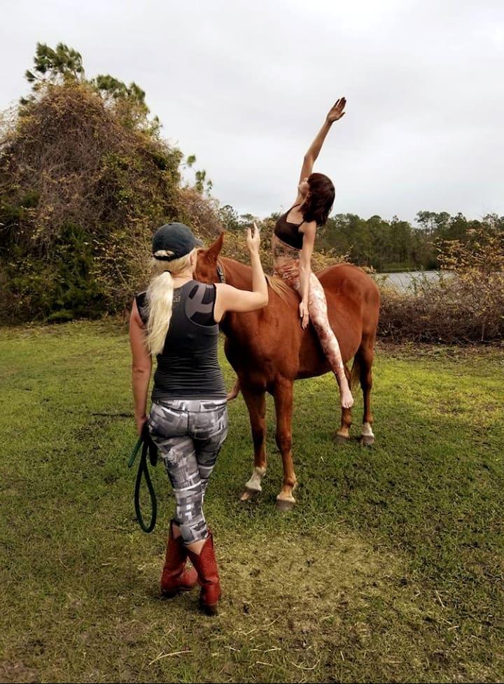 Equine Om Certified Instructor