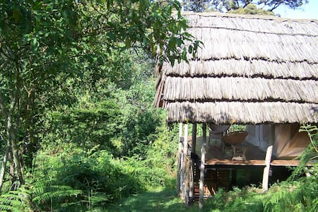 Cuckooland Tented Lodge, Uganda