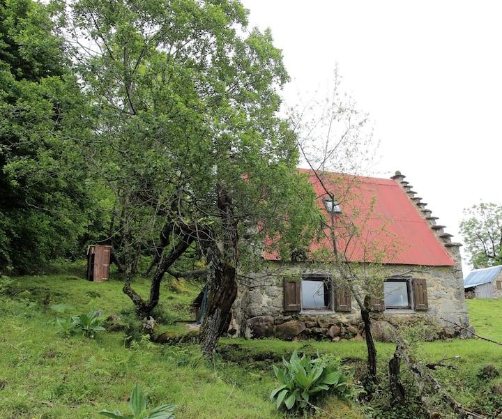 la petite maison perdue dans la montagne