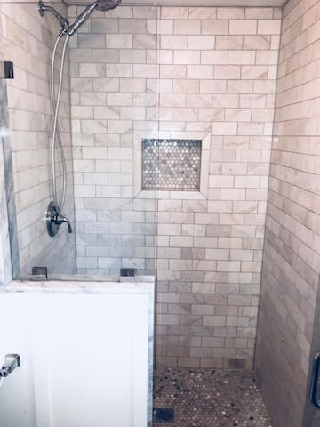 New Master bath walk-in shower