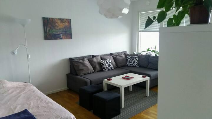 Cosy one room apartment near Halmstad University