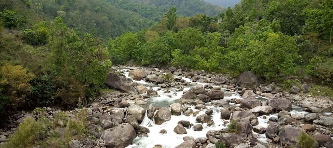 River Bank Homestay