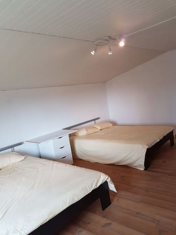 Shared very large double room in large house. - Thoiry - 獨棟