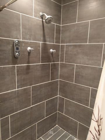 5 (yes, 5) shower heads!