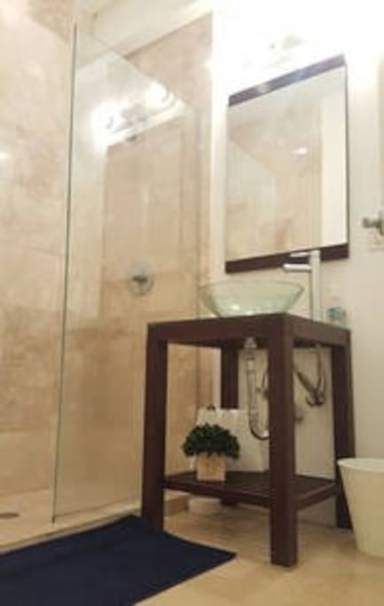 Bathroom - Glass Shower Door