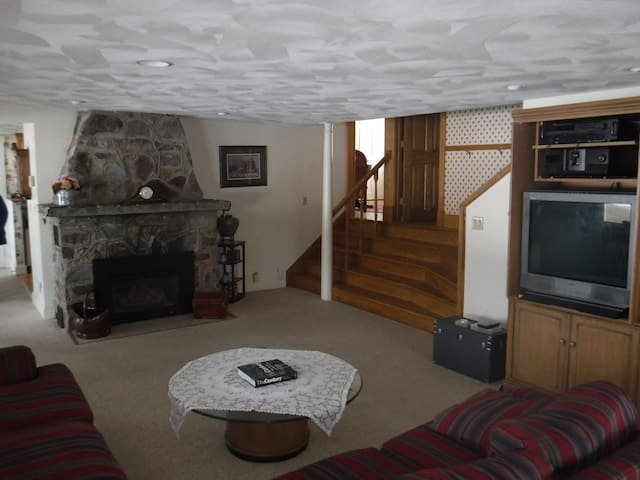 Gas fireplace in Living room. Steps lead to den, bath and then upper level