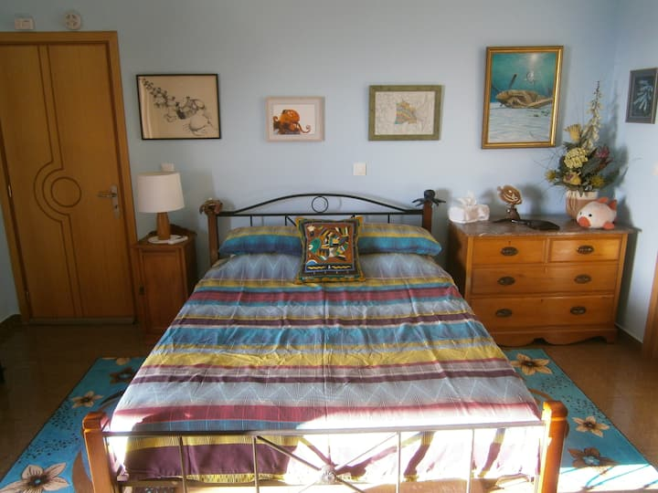 Karpathos Guest House Queen Room with Sea View