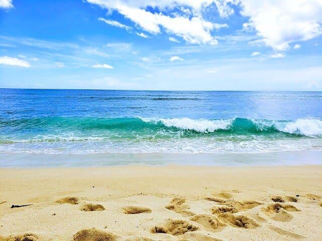 Sandy Isle Oasis