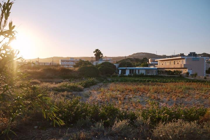 Oceanfront Studios with Amazing Views