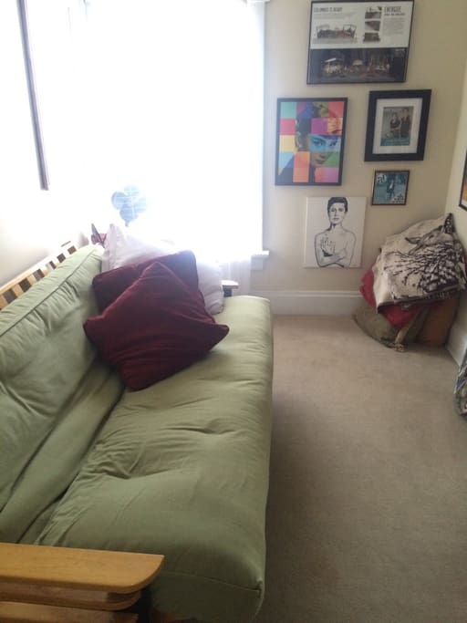 Cozy guest Room. Sofabed