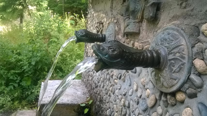 Fresh water from a local spring
