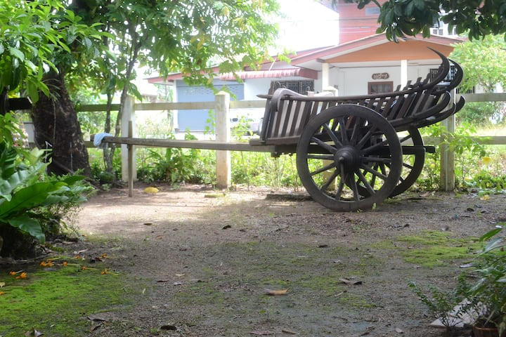 BaanKruChin (Longan): Stay among fruit trees