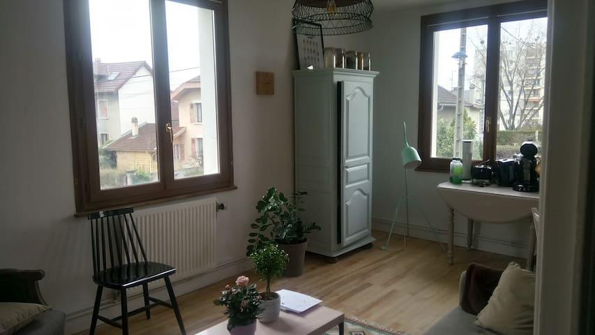 Appartement limite Annecy Cran - Cran-Gevrier - Byt