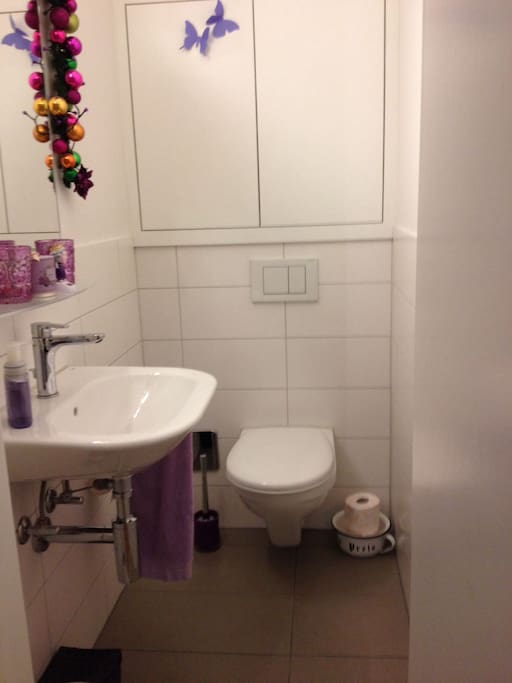 Toilet room with sink (separated from bathroom)