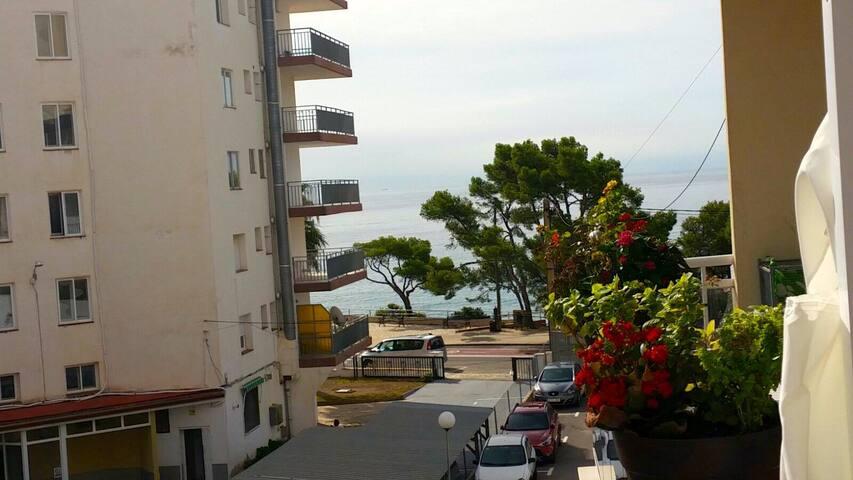 Apartamento al lado de la playa Cala Vienesos