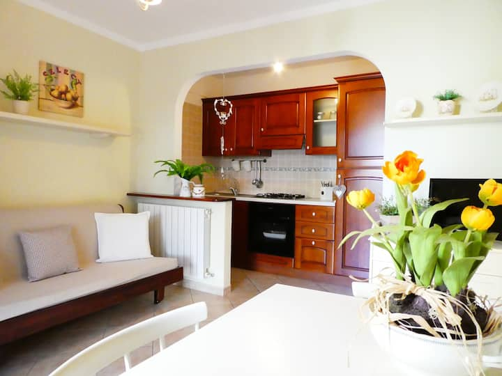 Beautiful apartment a few meters from the sea