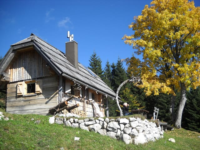 Retreat at USKOVNICA Mauntain Pasture,BOHINJ
