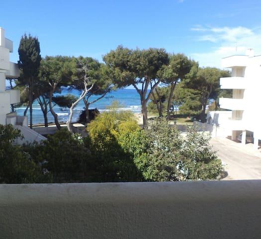 Appartamento sul mare2