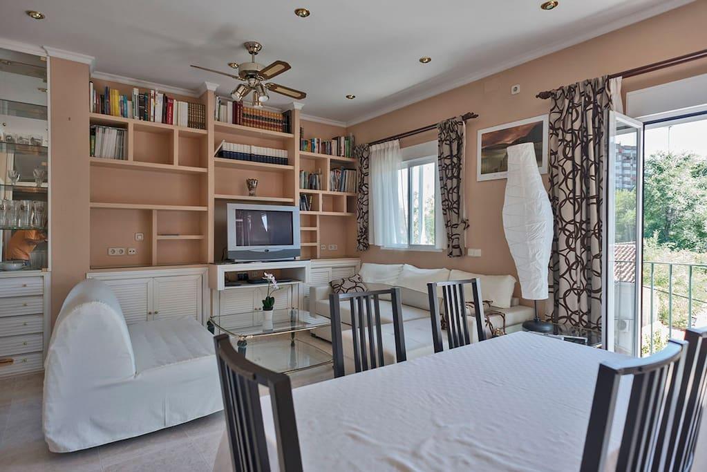 Salón con 2 sofás camas grandes