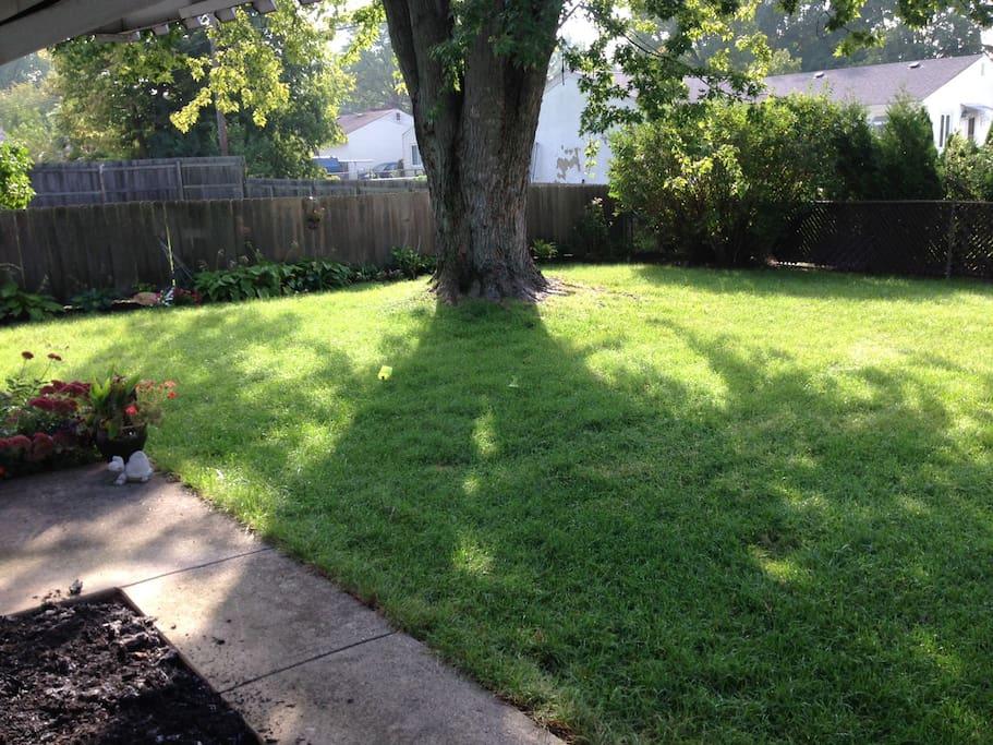 Fenced-In Backyard