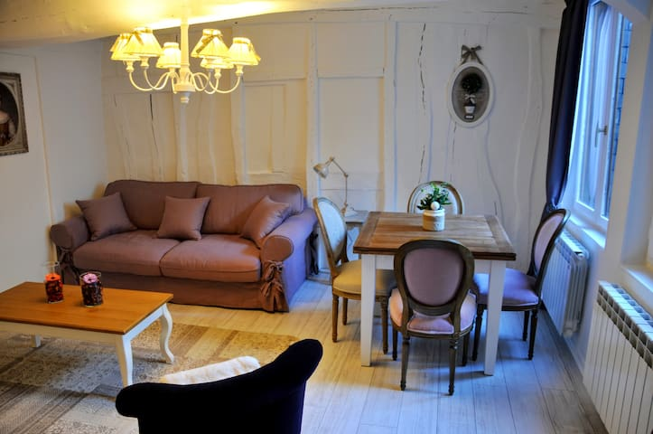 Petit Ange , charming apartment in Rouen - Rouen - อพาร์ทเมนท์