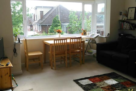 Cosy spacious single room - London - House